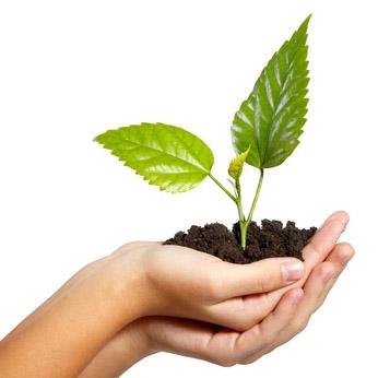 Isolatie is niet alleen goed voor het milieu maar bespaart u ook op de energierekening